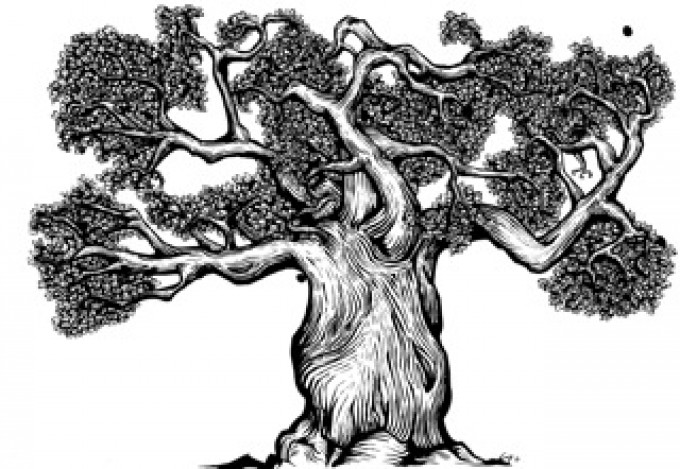 Earthed: The Trees' Tale